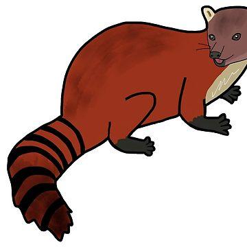 360x360 Lemur Catta