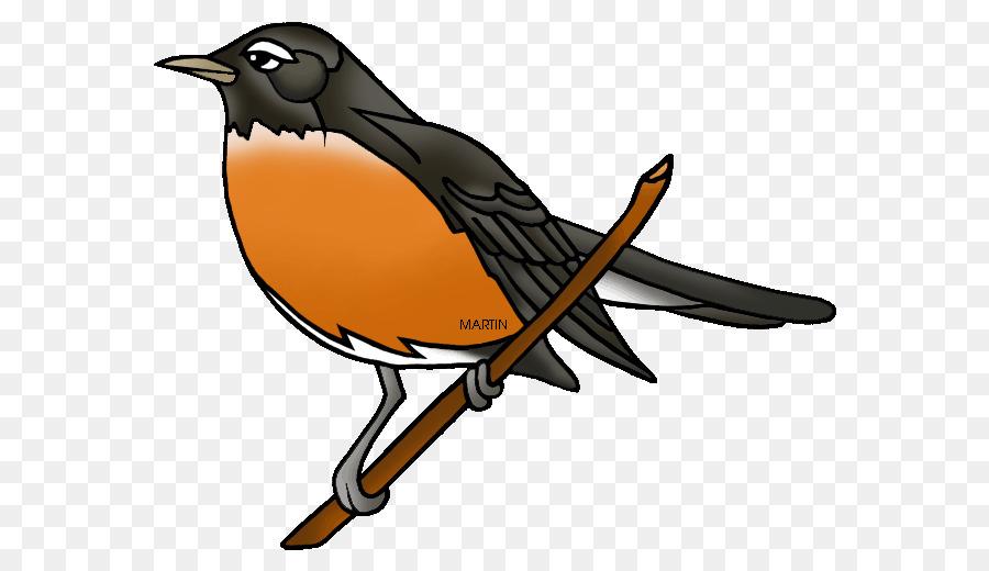 900x520 European Robin American Robin Youtube Clip Art
