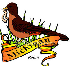 300x279 The State Bird Of Michigan, The Robin