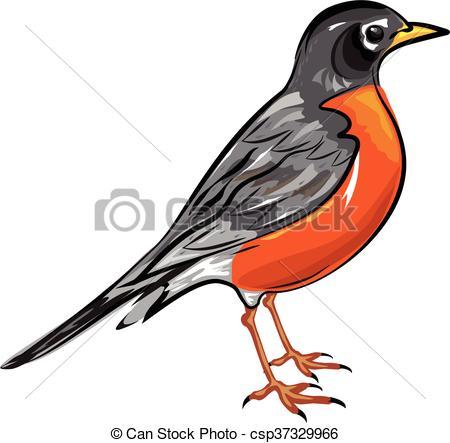 450x443 Robin Clipart American Robin Bird Vector Illustration Clip Art