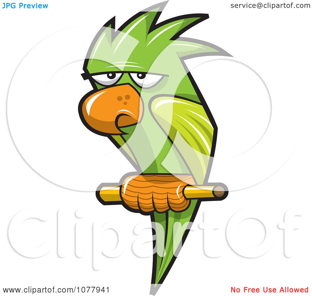 1080x1024 Clipart Perched Green Parrot