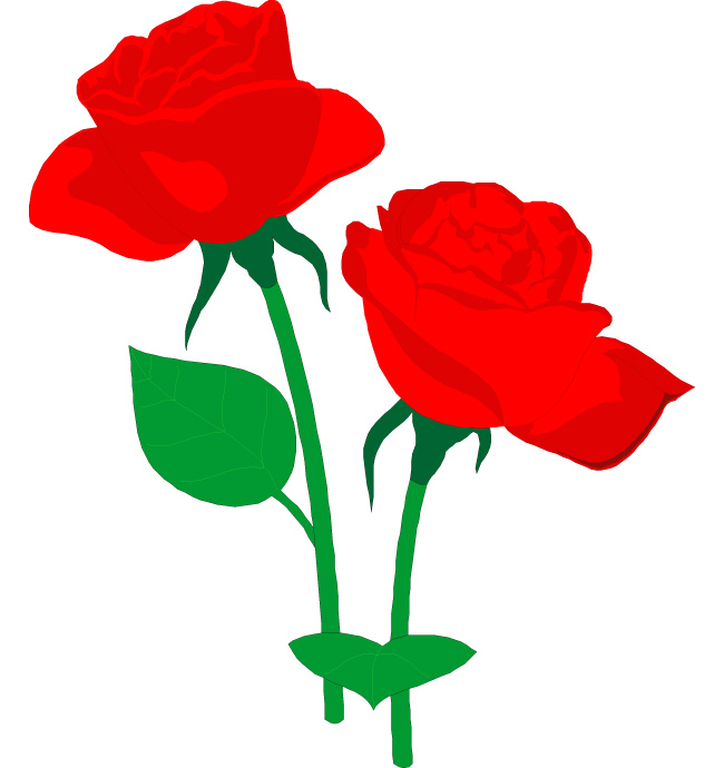 650x690 Red Roses Clipart