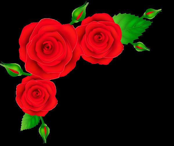 600x503 Red Roses Corner Transparent Png Clip Art Image