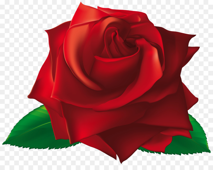 900x720 Rose Flower Clip Art
