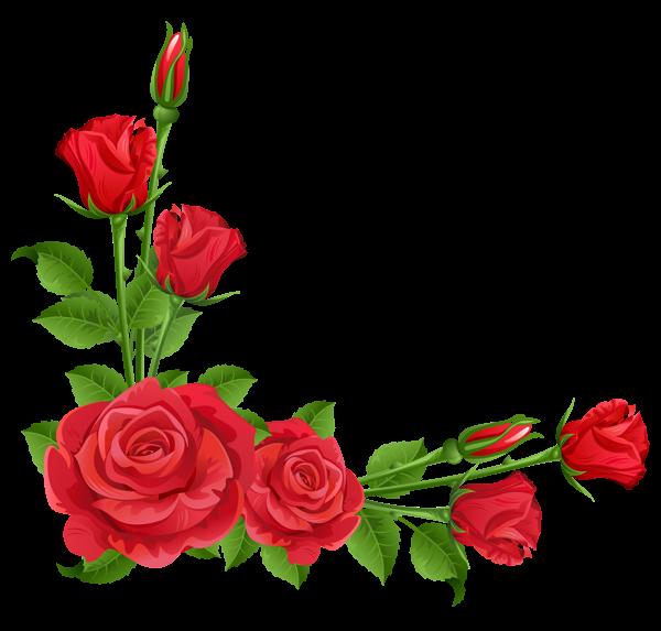 600x573 Vintage Red Rose