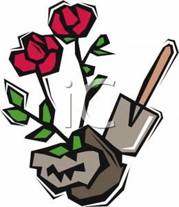 260x300 A Shovel And A Rosebush Clip Art Image