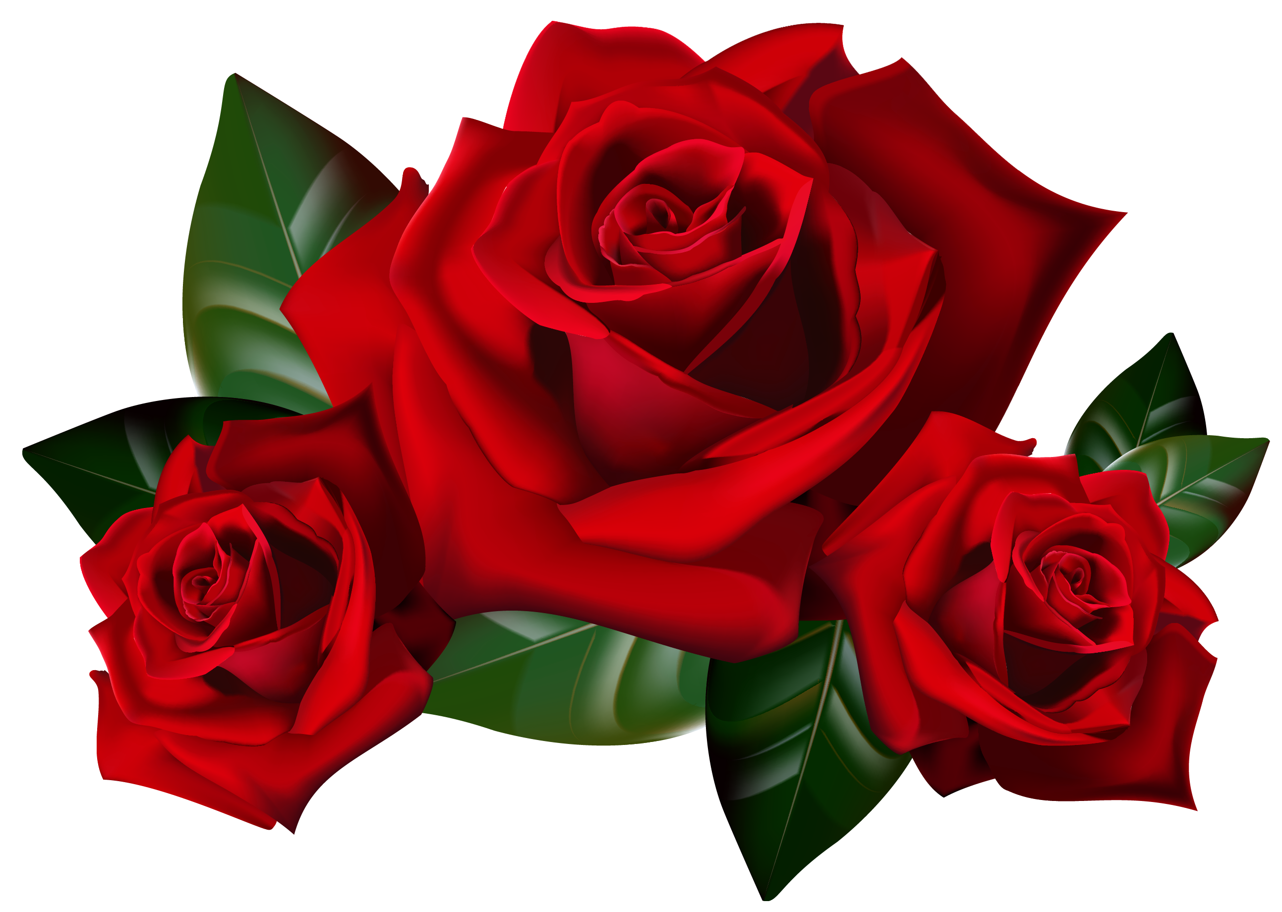 2586x1840 Bouquet Of Roses Frame Clipart Clipart Kid Rose Art