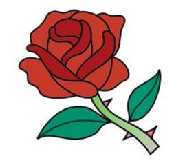 269x236 Drawn Rose Bush Red Rose Flower Free Collection Download