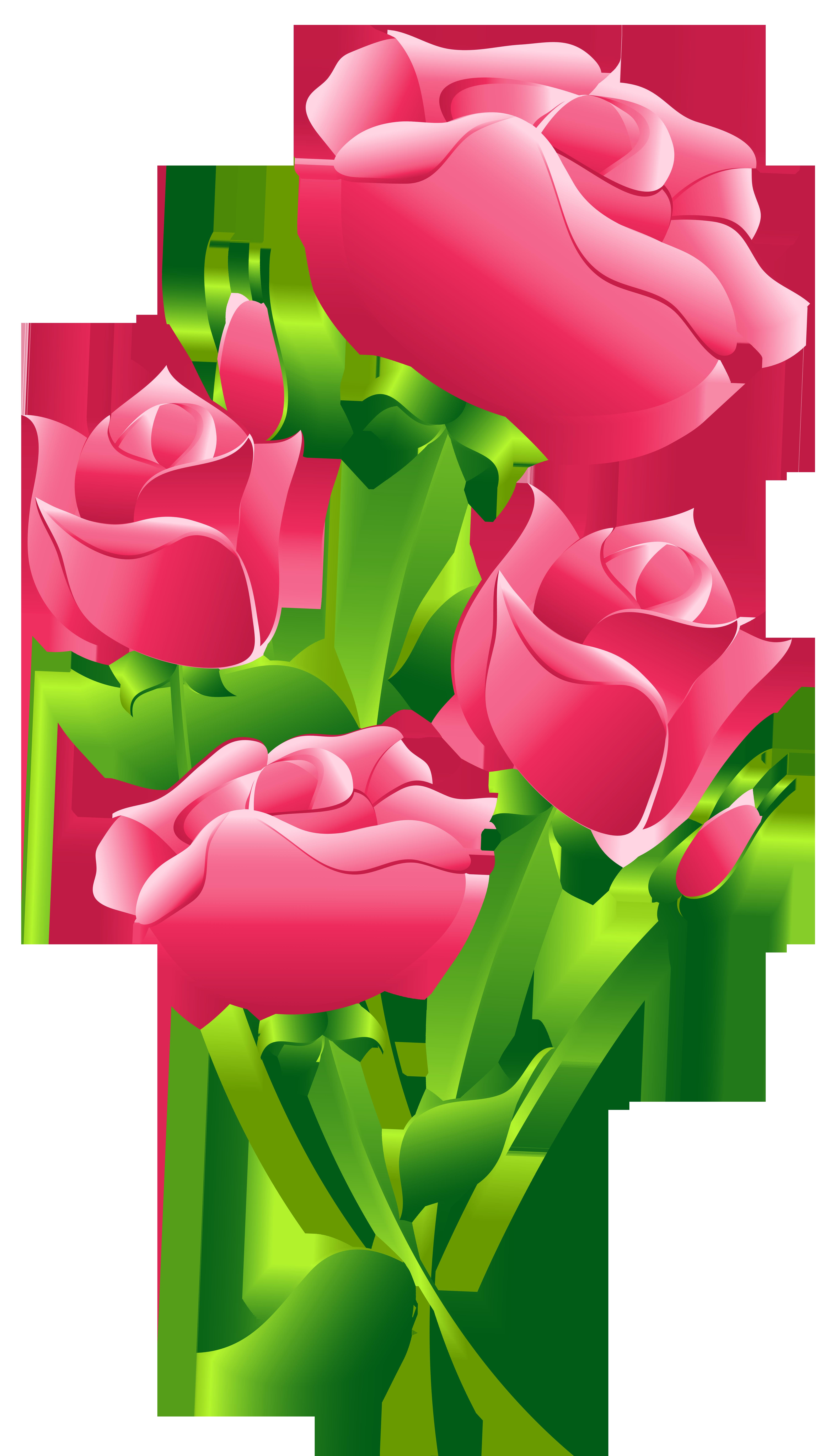 5434x9473 Pink Roses Transparent Png Clip Art Imageu200b Gallery Yopriceville