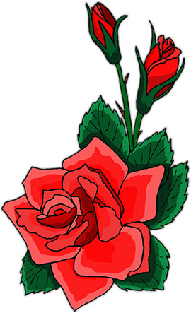 270x443 Red Roses Clipart Free Download Clip Art