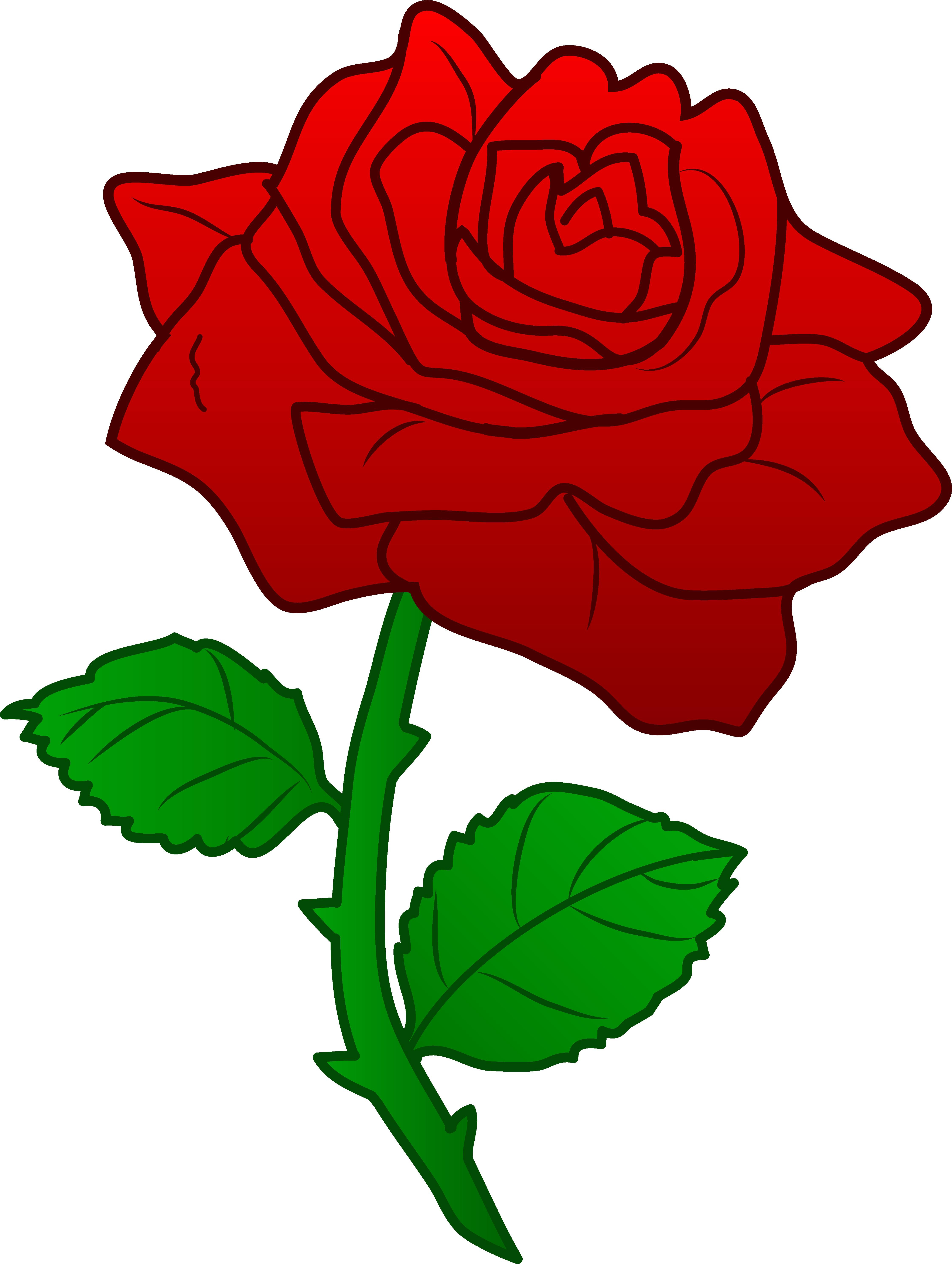 4481x5947 Top 75 Roses Clip Art