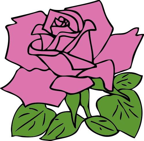 499x490 Free Rose Clipart