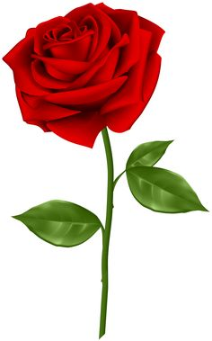 236x379 Lovely Transparent Red Rose Clipart Rose