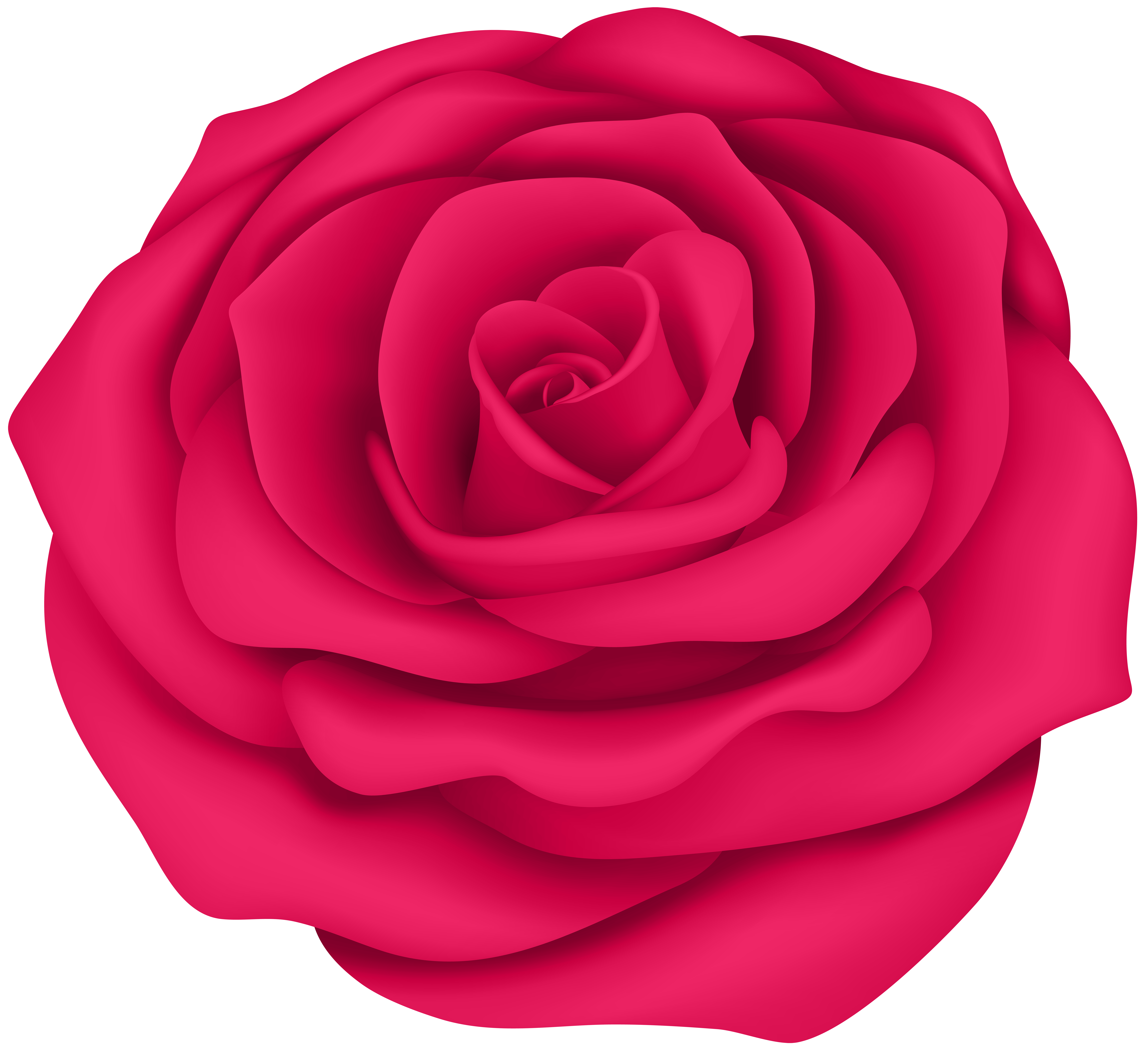 Rose Flower Clipart At Getdrawings Free For Personal Use Rose