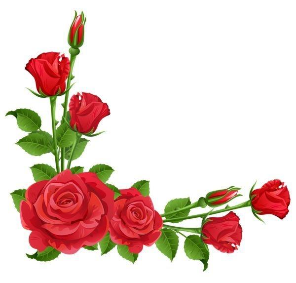 600x573 Roses Clip Art Borders