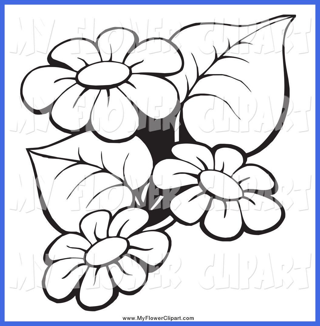 1054x1074 Amazing Flower Clip Art Black And White Outline B U Of Rose