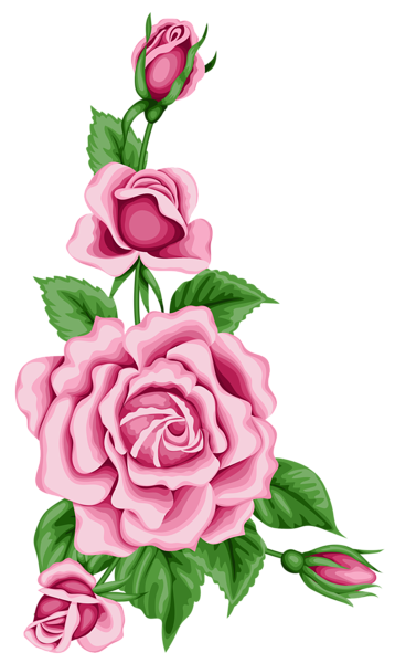 358x600 Roses Decoration Png Clipart Image Roses Clipart