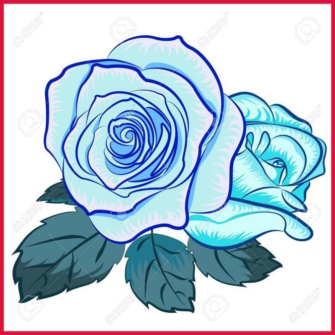 665x665 Stunning Vector Illustration Of Rose Flower Clip Art Royalty Pics