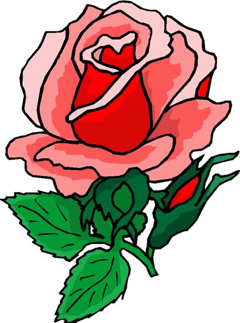 477x640 Clip Art Flowers Roses Many Flowers