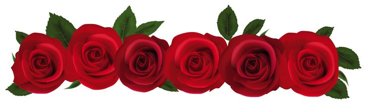 736x215 105 Best Rose Art Images On Clipart Images, Flowers
