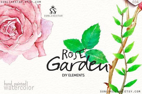 570x379 Rose Garden Diy Elements Watercolor Flowers Clipart Rose