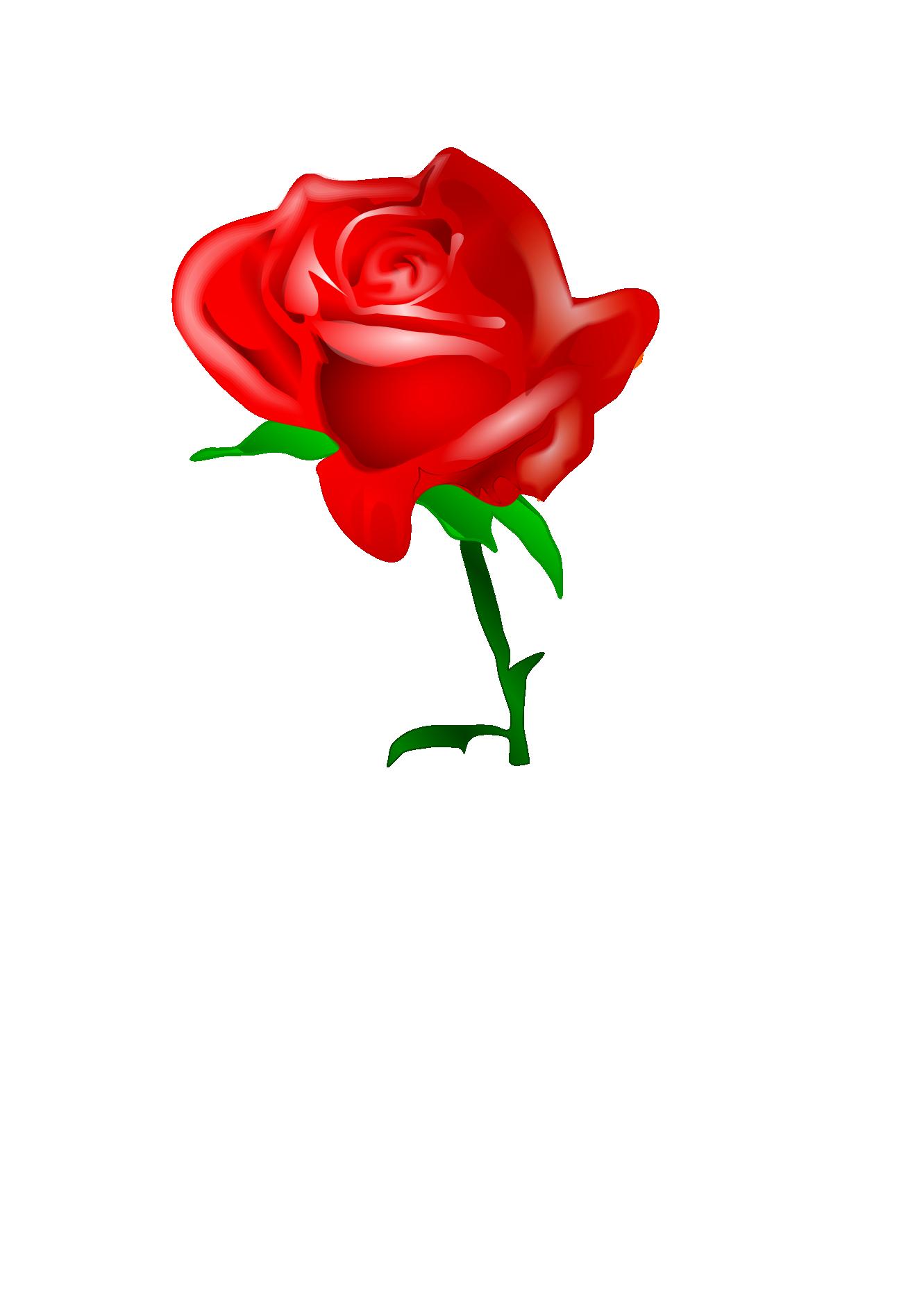 1331x1882 Hoontoidly Single Pink Rose Clip Art Images
