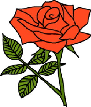 291x343 English Rose Clipart