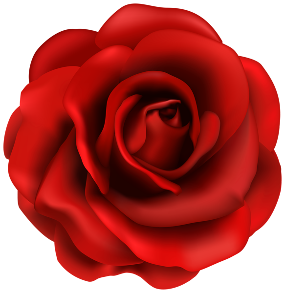 583x600 Creative Idea Red Rose Clipart Flower Png Image Line Art Doodle
