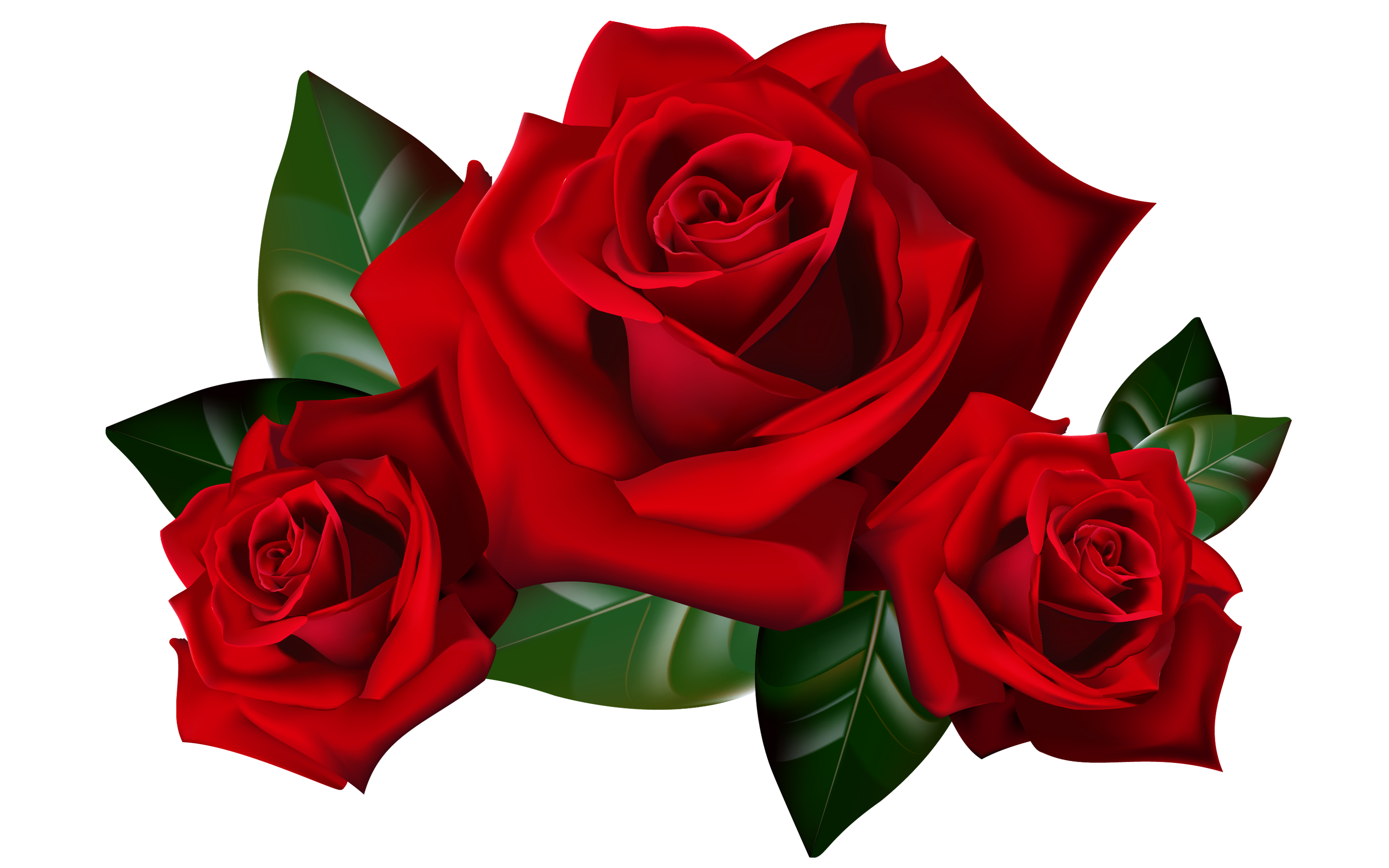 2880x1800 Clip Art Red Rose Clip Art With Pictures Red Rose Clip Art