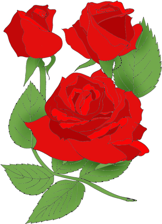 1083x1500 Top 75 Roses Clip Art
