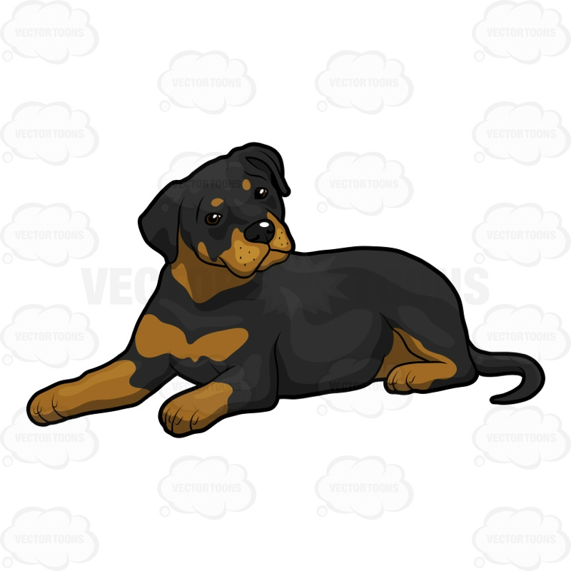 rottweiler clipart at getdrawings com free for personal use rh getdrawings com rottweiler clip art images rottweiler clipart free