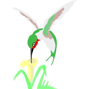 300x300 Free Hummingbird Clip Art Free Clipart Images Clipartix 2