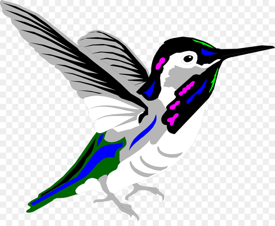 900x740 Hummingbird Animation Clip Art