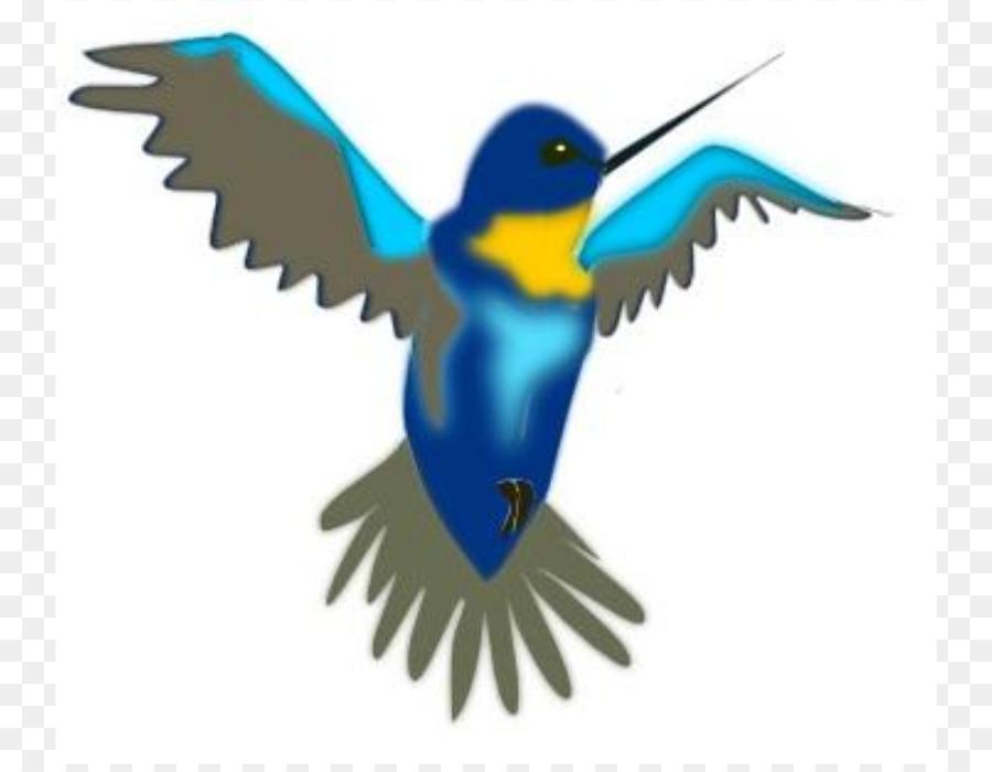 900x700 Hummingbird Cartoon Clip Art
