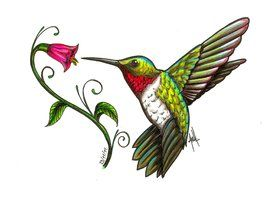 275x200 115 Best Hummingbirds Amp Clipart Images On Humming