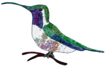 350x221 Hummingbird Clip Art Semi Realistic By Gramma Elliott