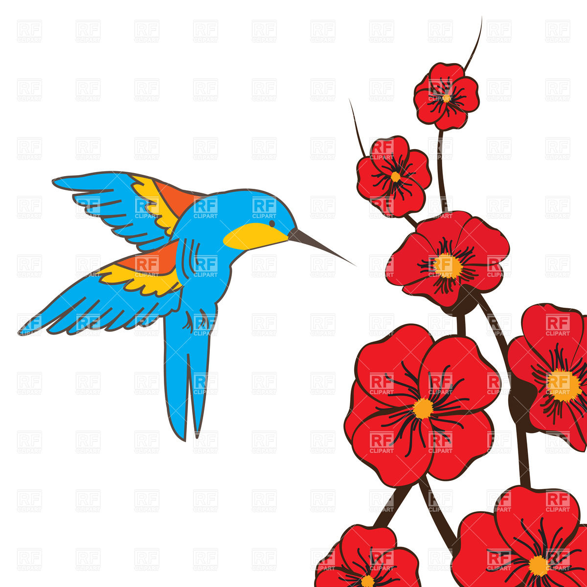 1200x1200 Hummingbird And Red Flowers Royalty Free Vector Clip Art Image