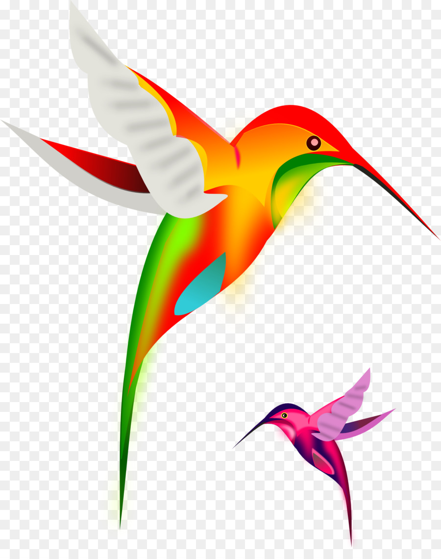900x1140 Ruby Throated Hummingbird Clip Art