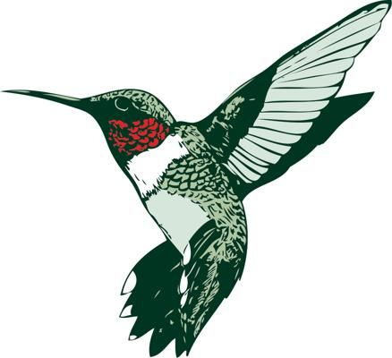 438x400 Hummingbird Clip Art Hummingbird Clipart Ru Throated Humminhbirds