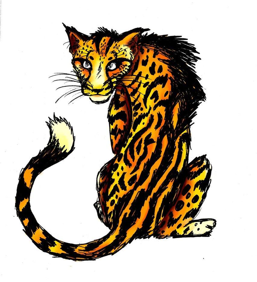 853x936 King Cheetah By Secoramoondragon