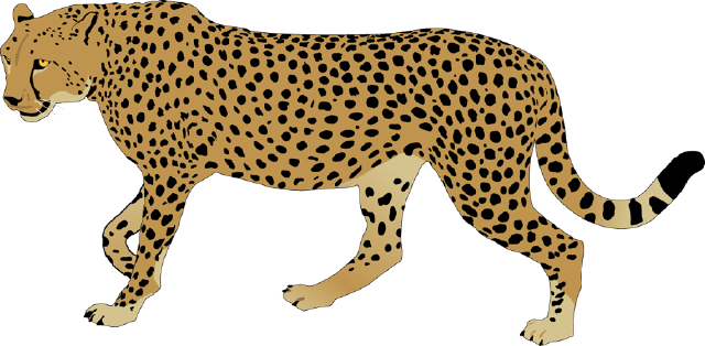 640x314 The Top 5 Best Blogs On Fast Cheetah Clipart