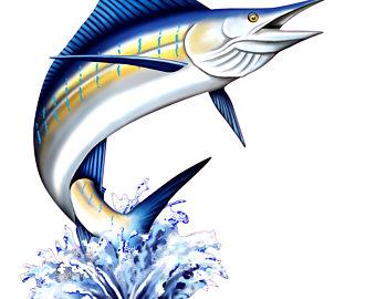 340x270 Sailfish Clipart Marlin 3868816