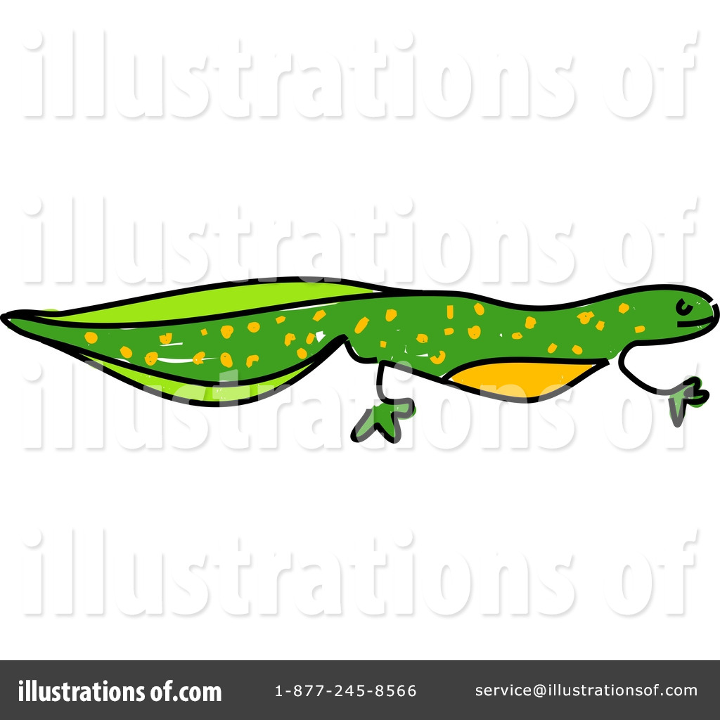 1024x1024 Newt Clipart Reptile Free Collection Download And Share Newt