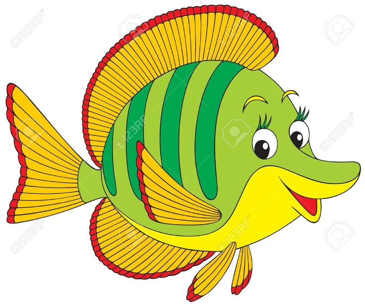 Saltwater Fish Clipart