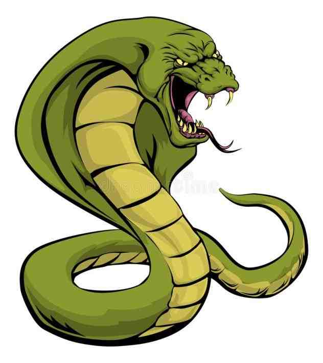 632x709 Mean Snake Clipart Snake Review