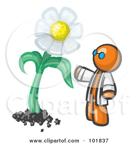450x470 Environmental Clipart Illustration Image Of North And South