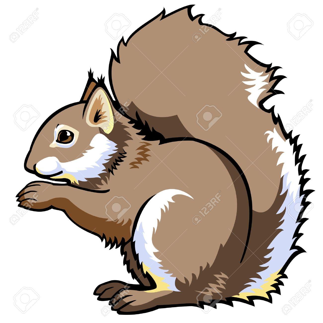 1300x1300 Top 87 Squirrel Clip Art