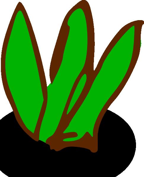 486x598 Sea Plants Clipart
