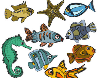 340x270 Sea Life Clipart Beach Clipart Fish Clipart Sea Turtle