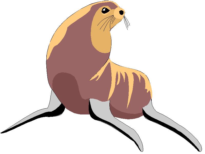800x600 Sea Lion Clip Art
